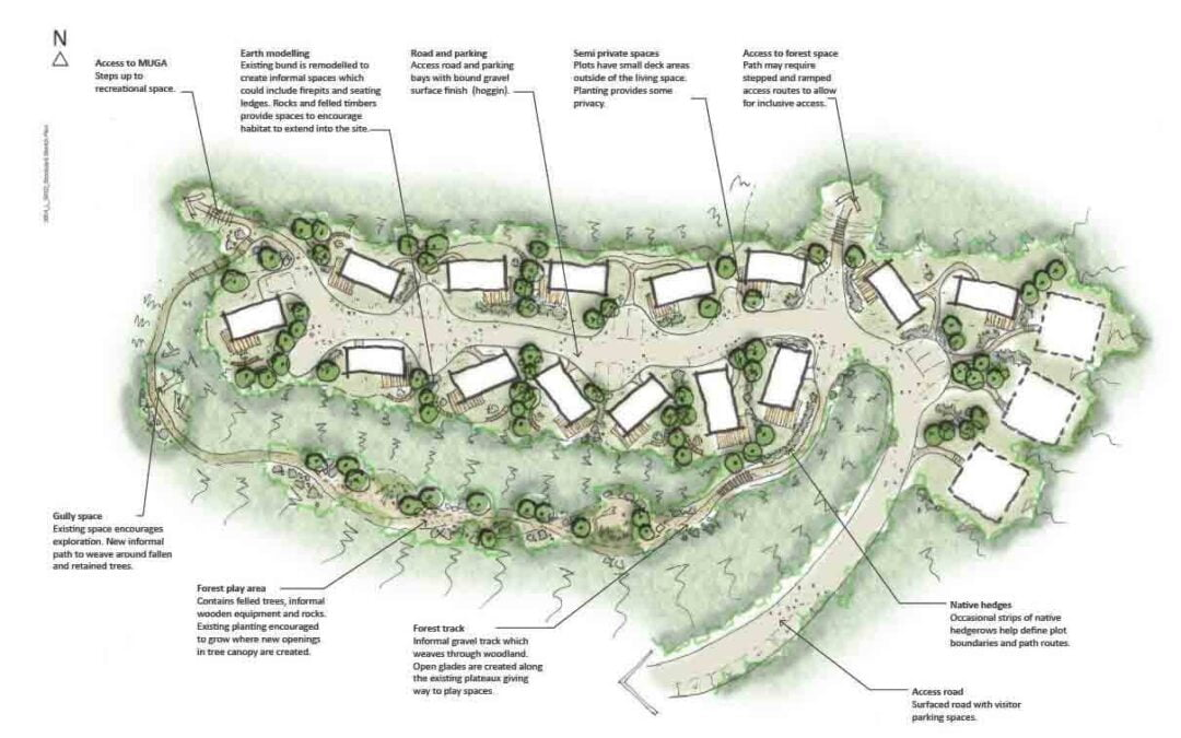 Branching out – The future for street trees