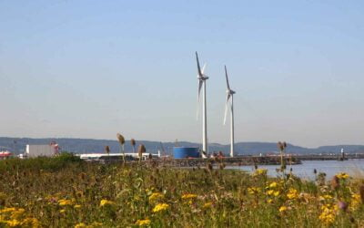 Contracts for Difference: Onshore Wind And Solar Development
