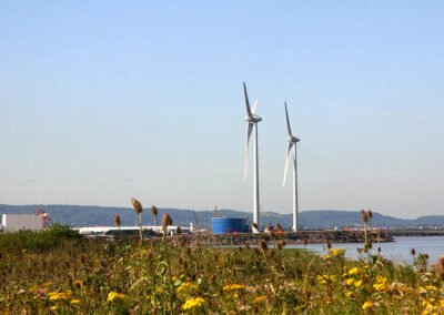 Severn Estuary, Habitats Regulations Assessment