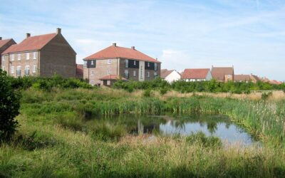 Game changing decision on Habitats Regulations Assessment – Implications for Planning and Development